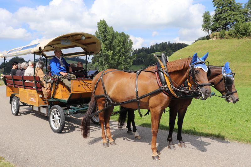 Berghof-Ferien 2020: Ausfahrt mit der Kutsche bei schönem Sommerwetter